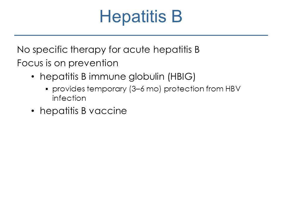 Hepatitis B No specific therapy for acute hepatitis B
