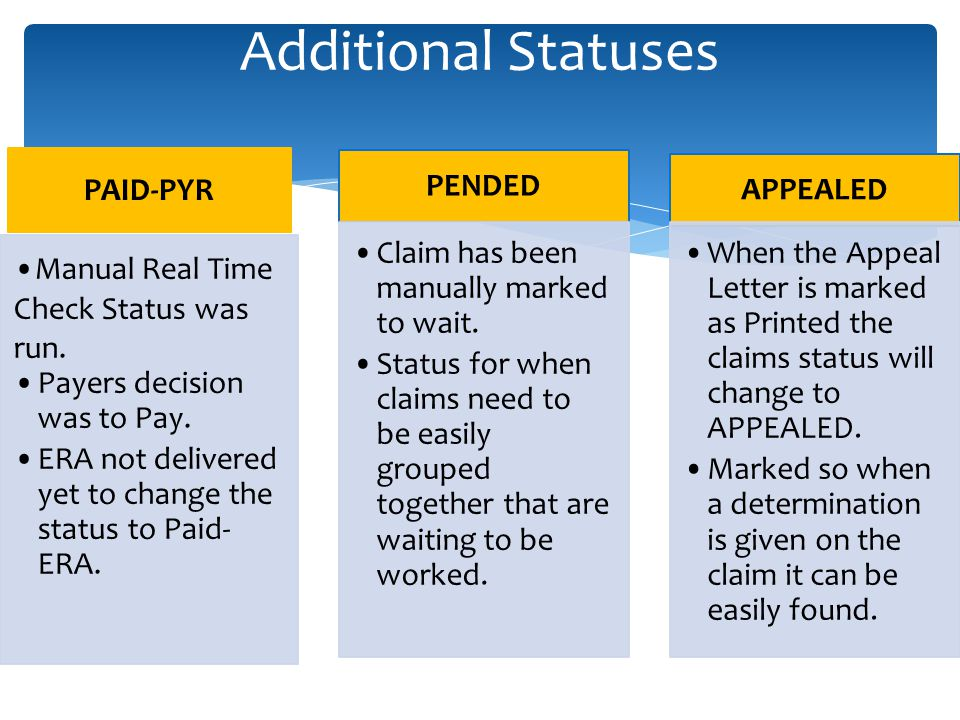 Additional Statuses PAID-PYR Manual Real Time Check Status was run.