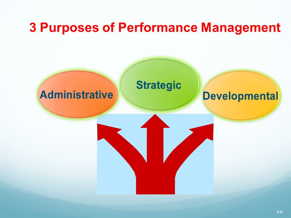 3 Purposes of Performance Management