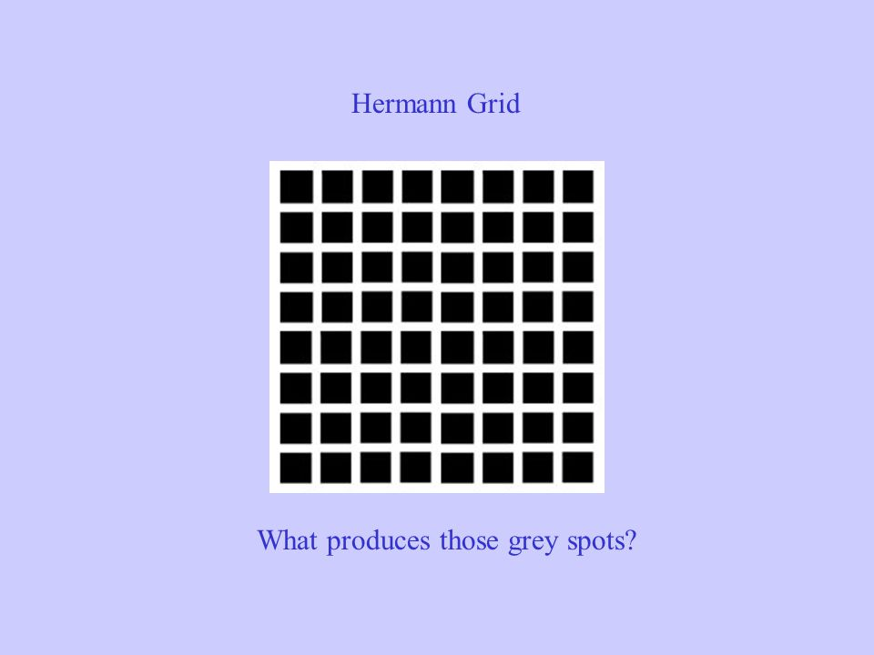 Hermann Grid What produces those grey spots
