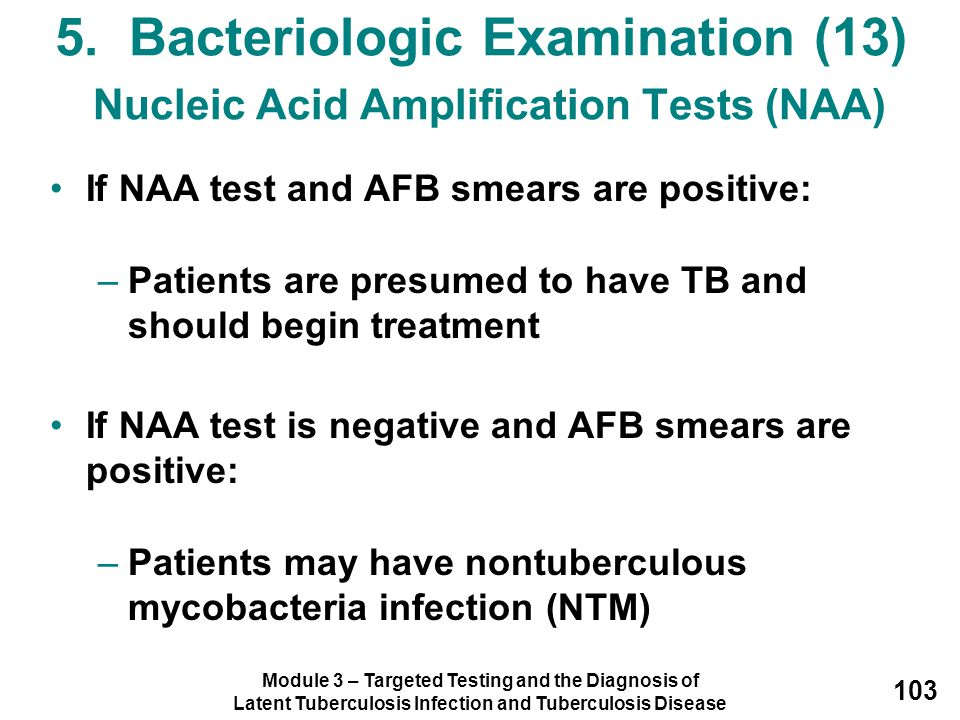 5. Bacteriologic Examination (13) Nucleic Acid Amplification Tests (NAA)