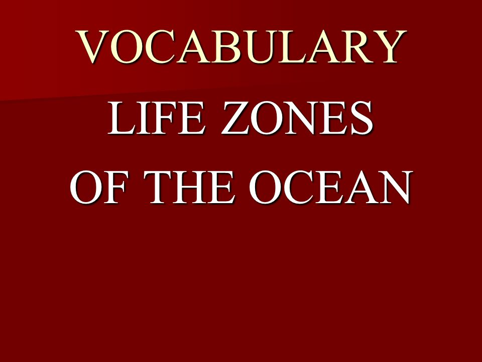 VOCABULARY LIFE ZONES OF THE OCEAN