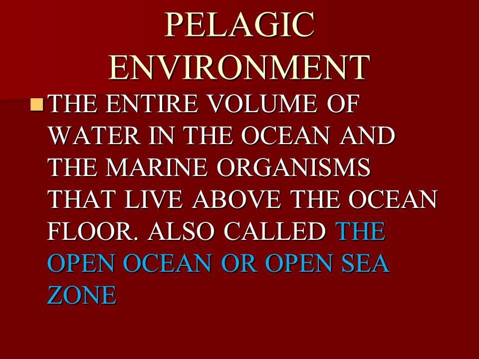 PELAGIC ENVIRONMENT