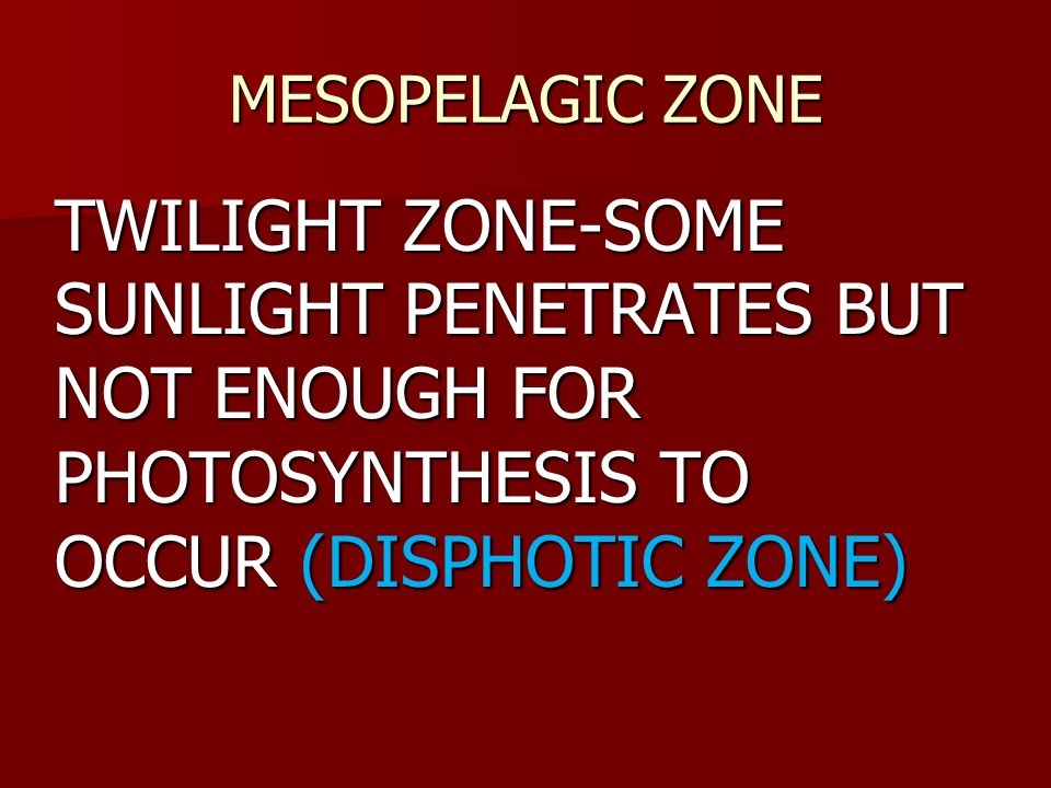 MESOPELAGIC ZONETWILIGHT ZONE-SOME SUNLIGHT PENETRATES BUT NOT ENOUGH FOR PHOTOSYNTHESIS TO OCCUR (DISPHOTIC ZONE)
