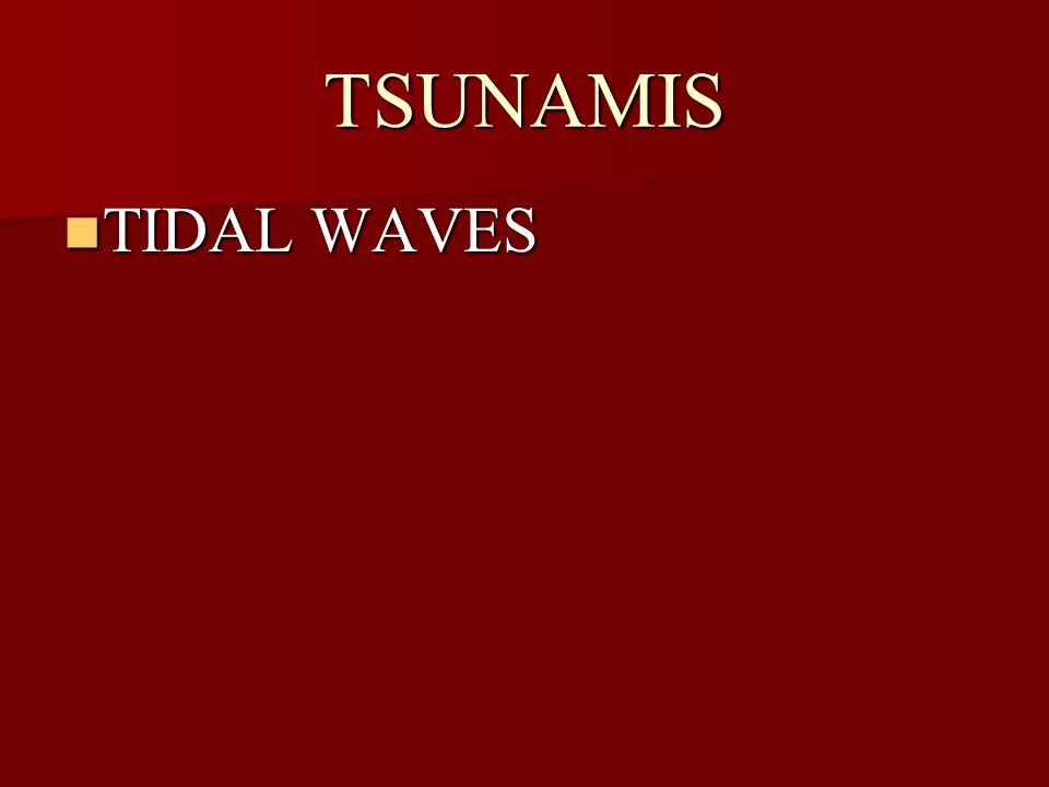 TSUNAMIS TIDAL WAVES