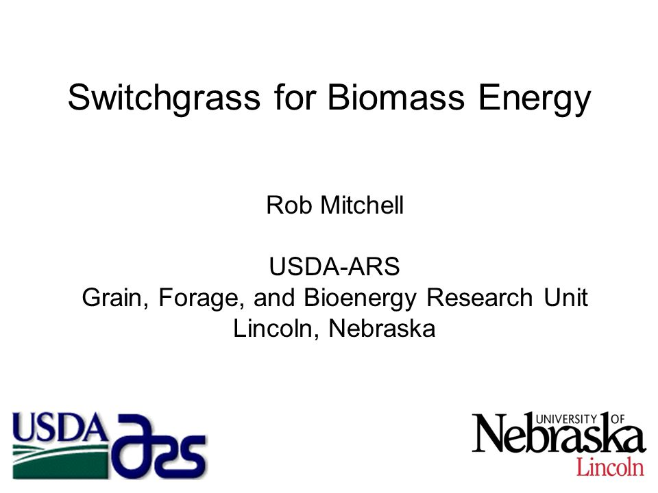 Switchgrass for Biomass Energy