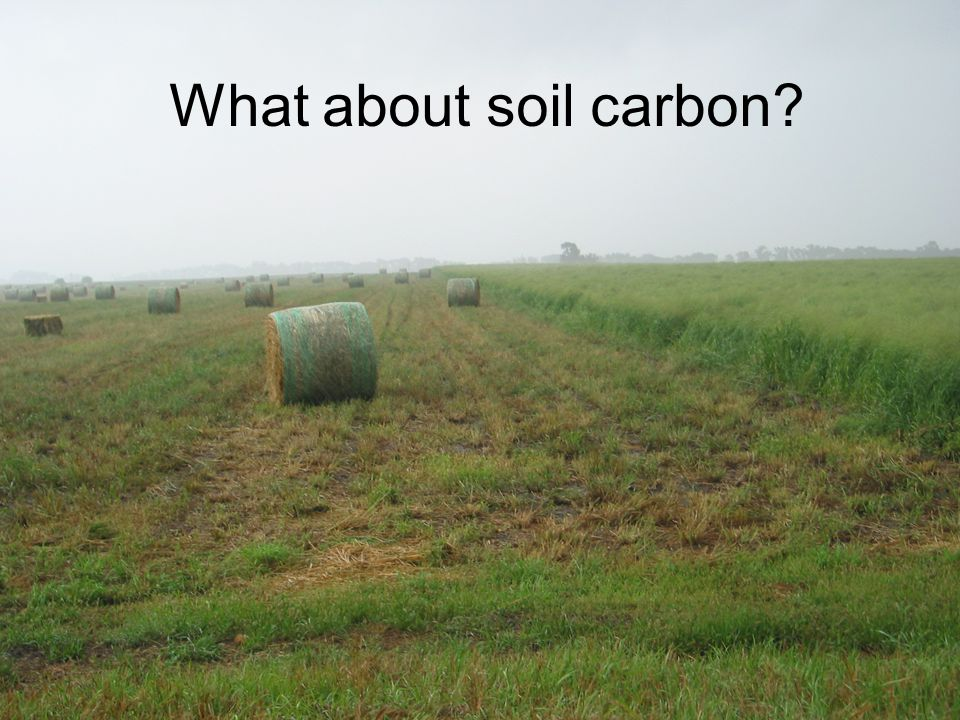 What about soil carbon