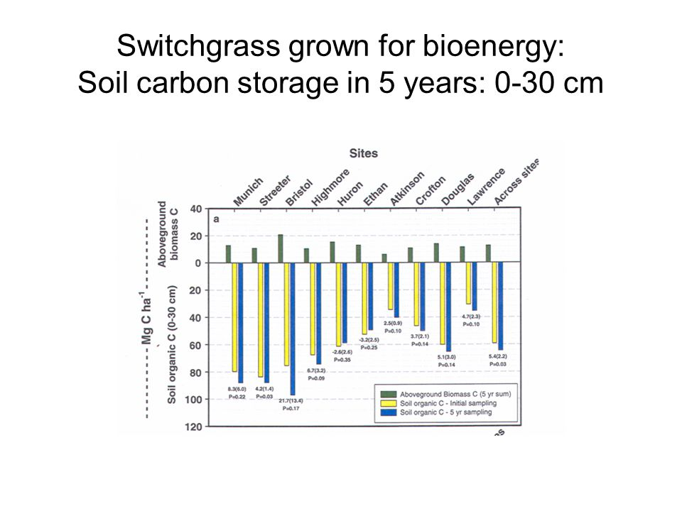 Switchgrass grown for bioenergy: Soil carbon storage in 5 years: 0-30 cm