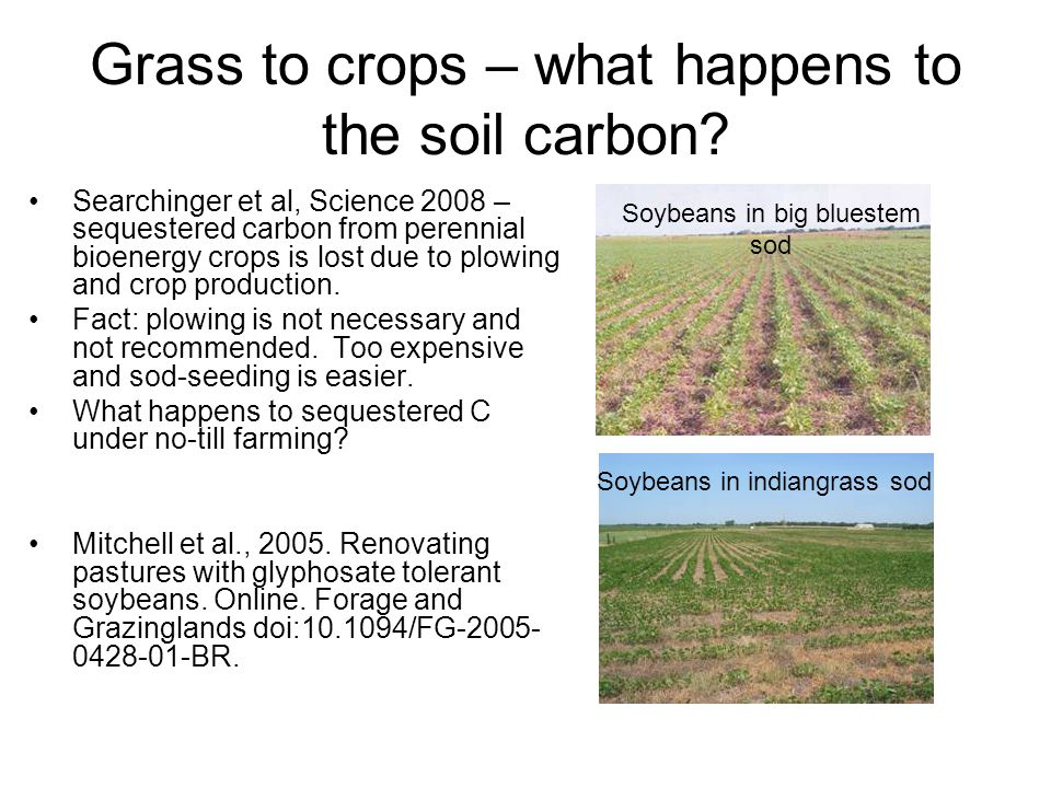 Grass to crops – what happens to the soil carbon