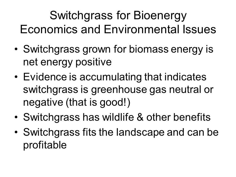 Switchgrass for Bioenergy Economics and Environmental Issues