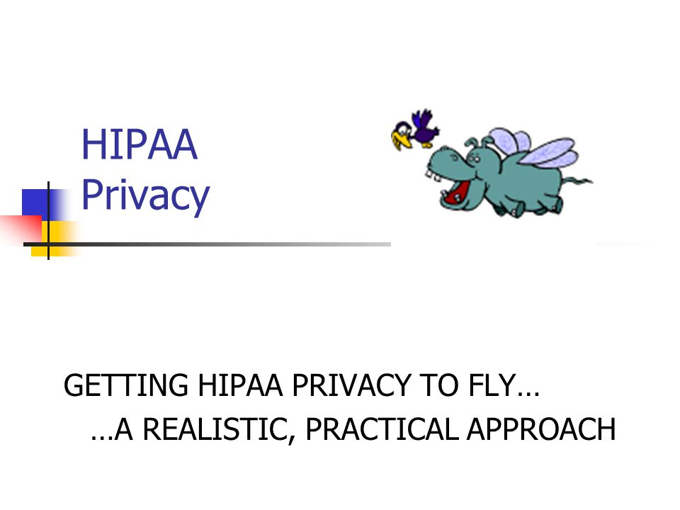 GETTING HIPAA PRIVACY TO FLY… …A REALISTIC, PRACTICAL APPROACH
