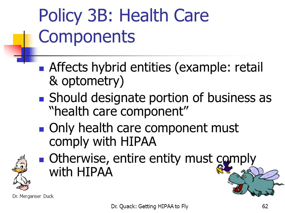 Policy 3B: Health Care Components