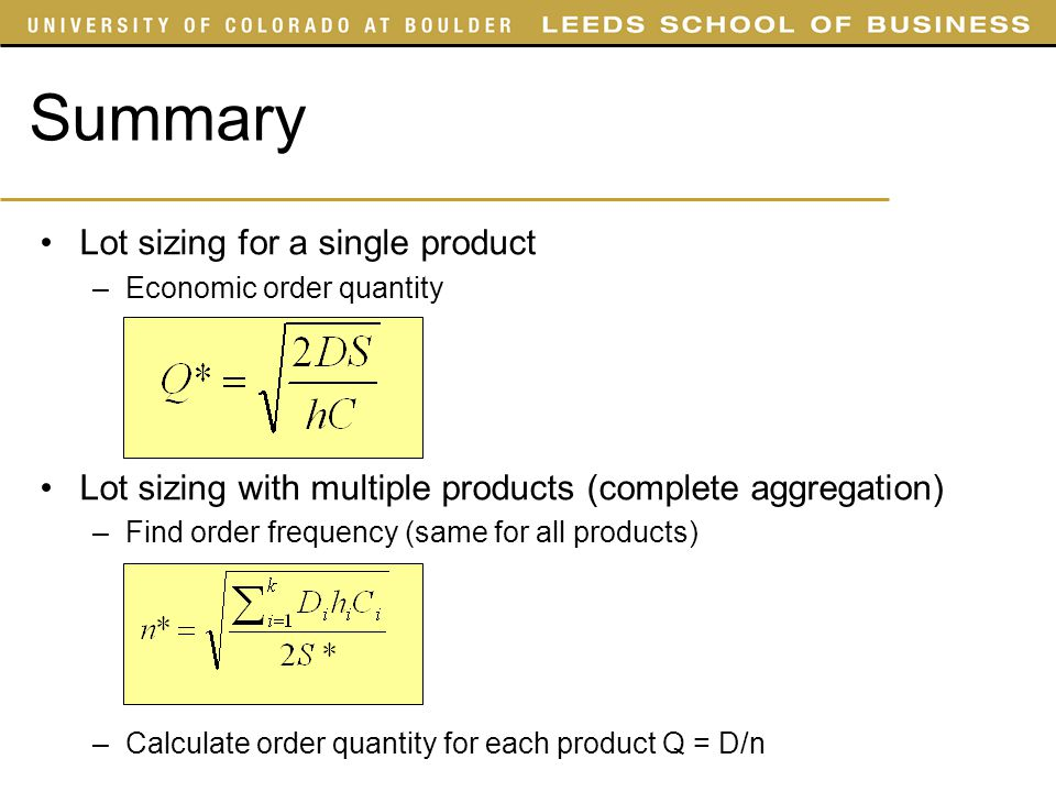 Summary Lot sizing for a single product