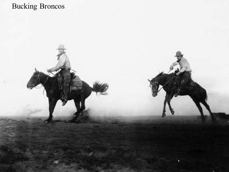 Bucking Broncos