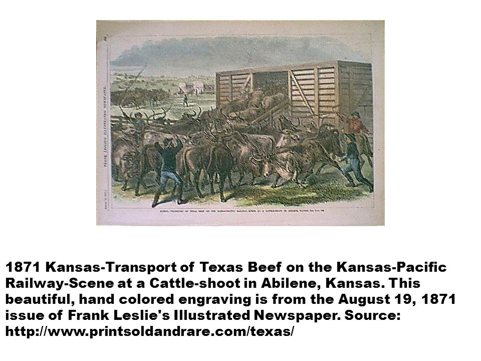 1871 Kansas-Transport of Texas Beef on the Kansas-Pacific Railway-Scene at a Cattle-shoot in Abilene, Kansas.