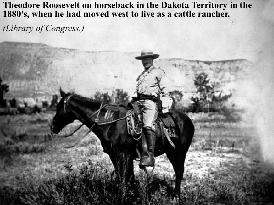 Theodore Roosevelt on horseback in the Dakota Territory in the 1880 s, when he had moved west to live as a cattle rancher.