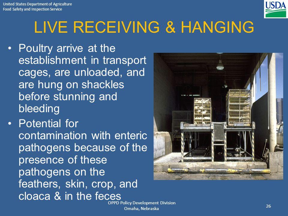 LIVE RECEIVING & HANGING