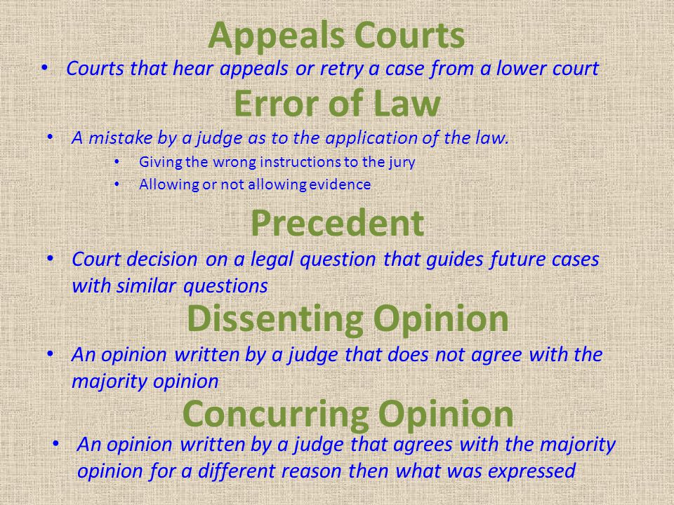 Appeals Courts Error of Law Precedent Dissenting Opinion