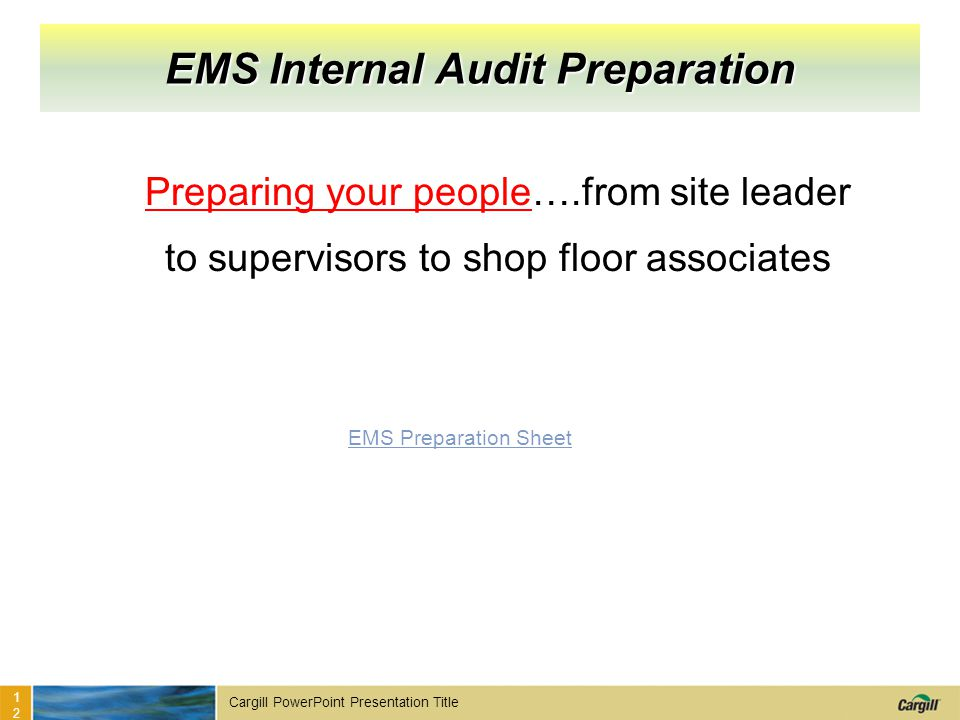 EMS Internal Audit Preparation