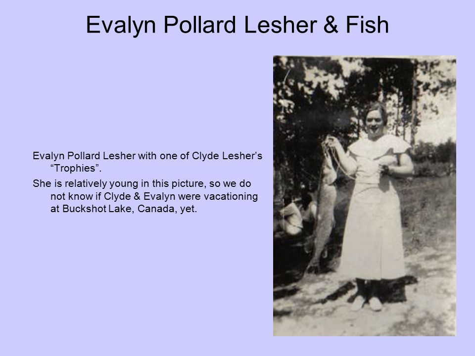 Evalyn Pollard Lesher & Fish