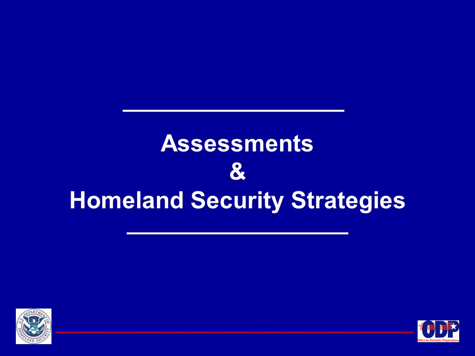 Assessments & Homeland Security Strategies