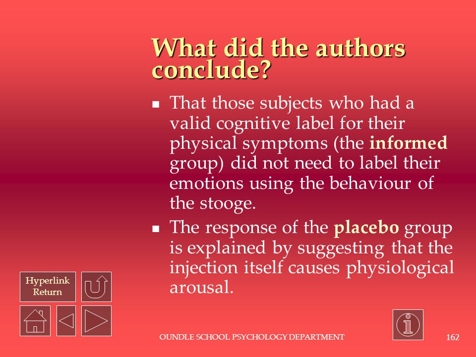 What did the authors conclude