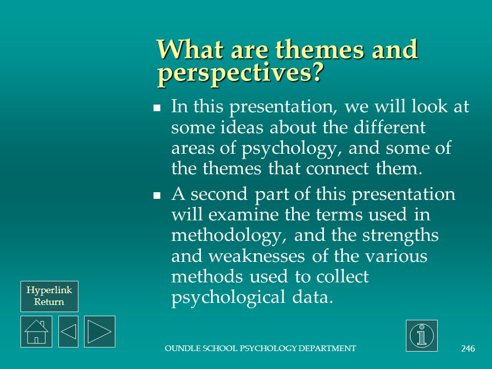 What are themes and perspectives
