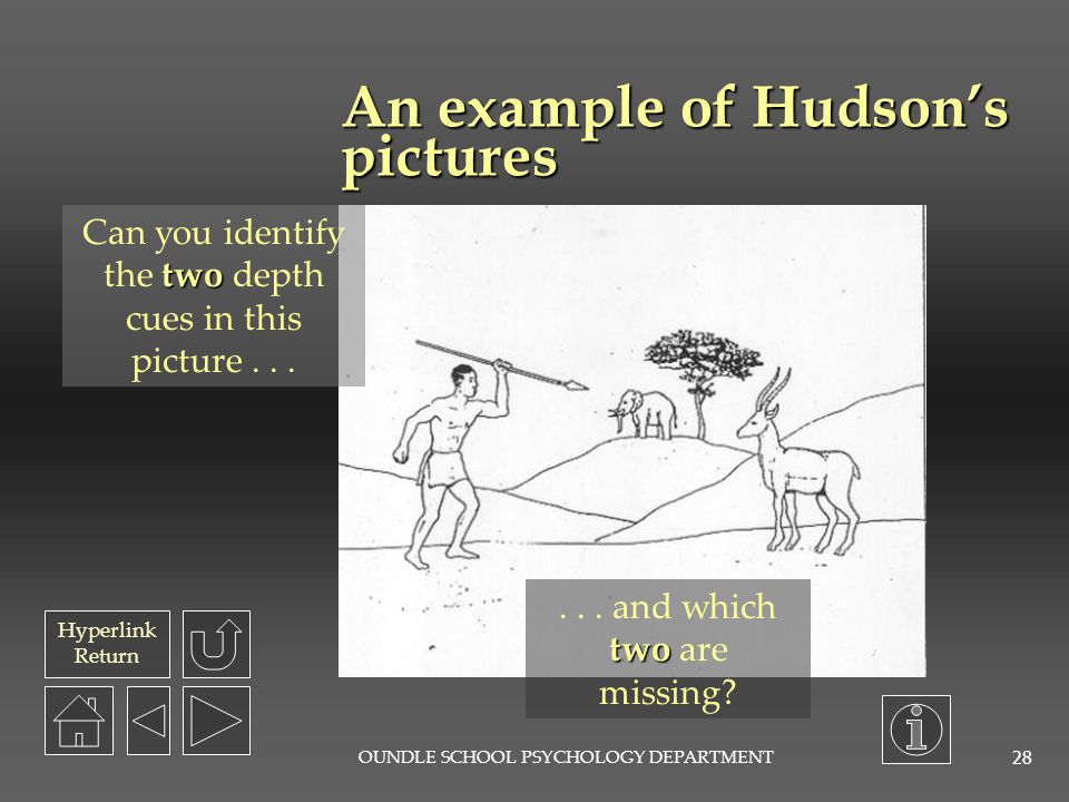 An example of Hudson's pictures