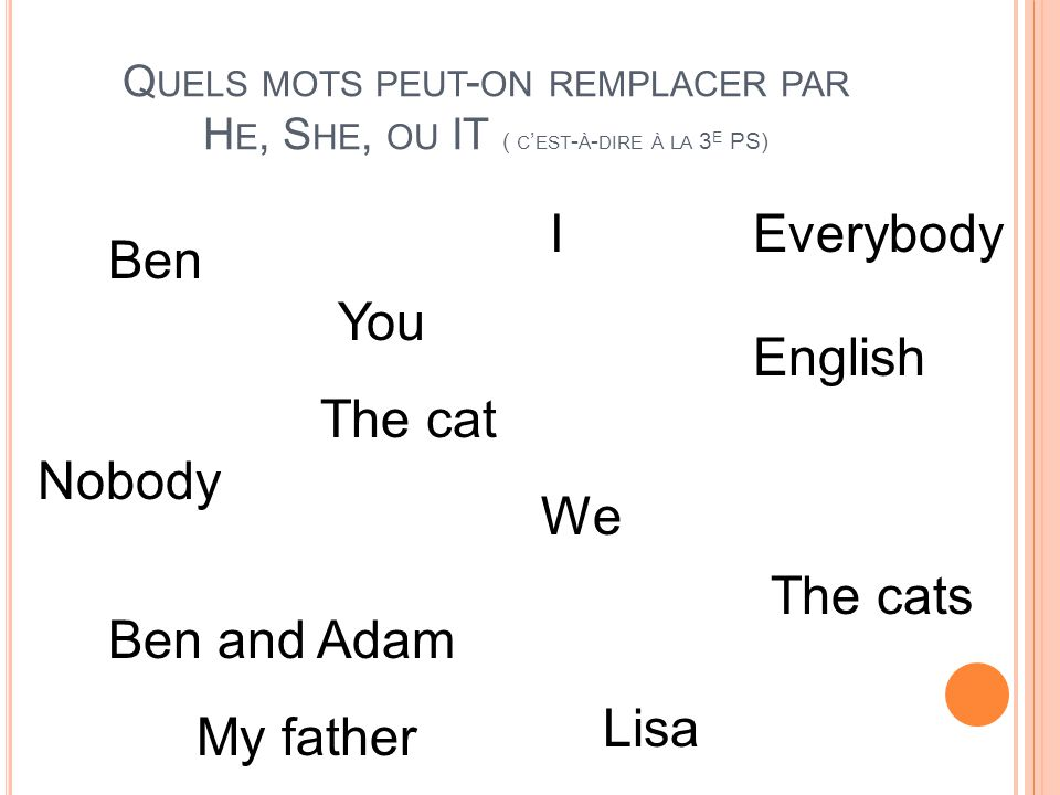 I Everybody Ben You English The cat Nobody We The cats Ben and Adam