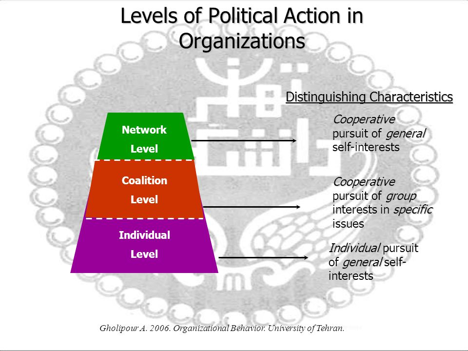 Levels of Political Action in Organizations