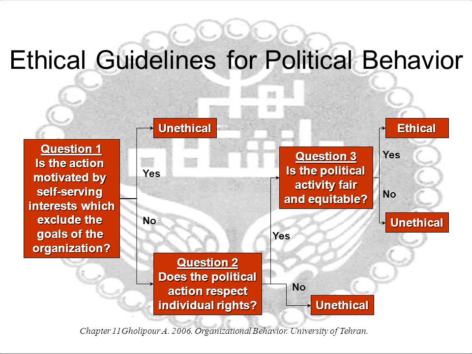 Ethical Guidelines for Political Behavior