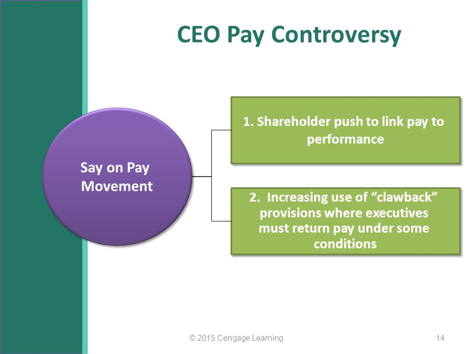 CEO Pay Controversy Say on Pay Movement