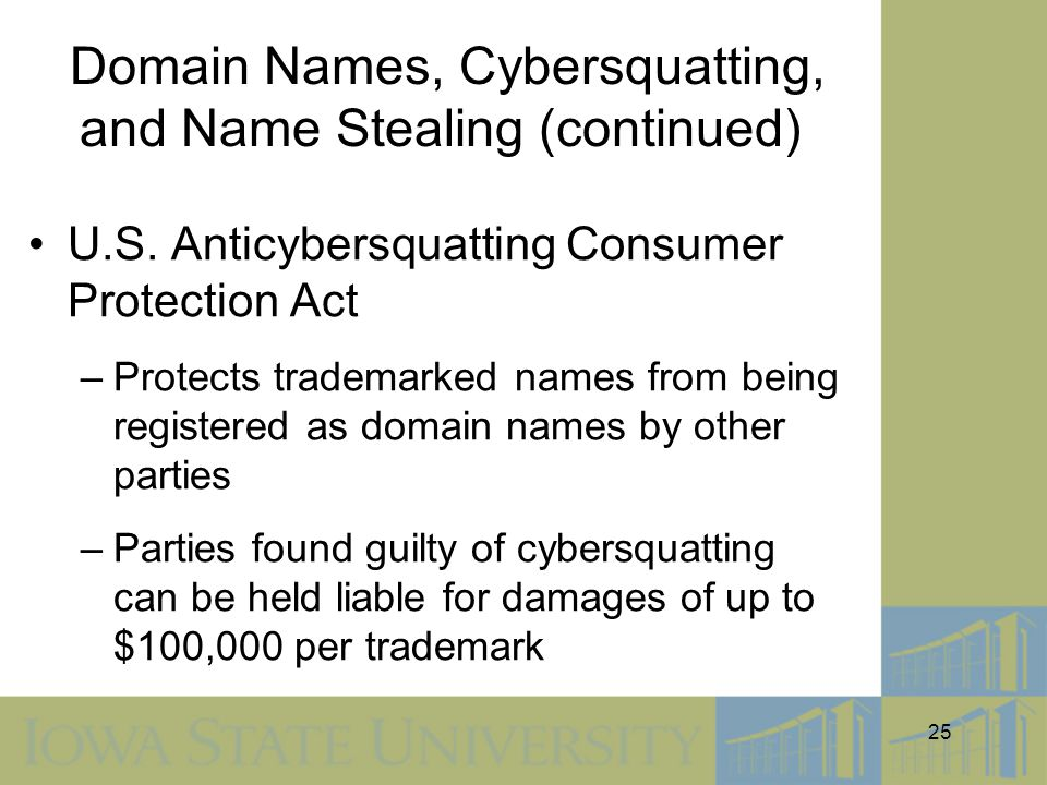 Domain Names, Cybersquatting, and Name Stealing (continued)