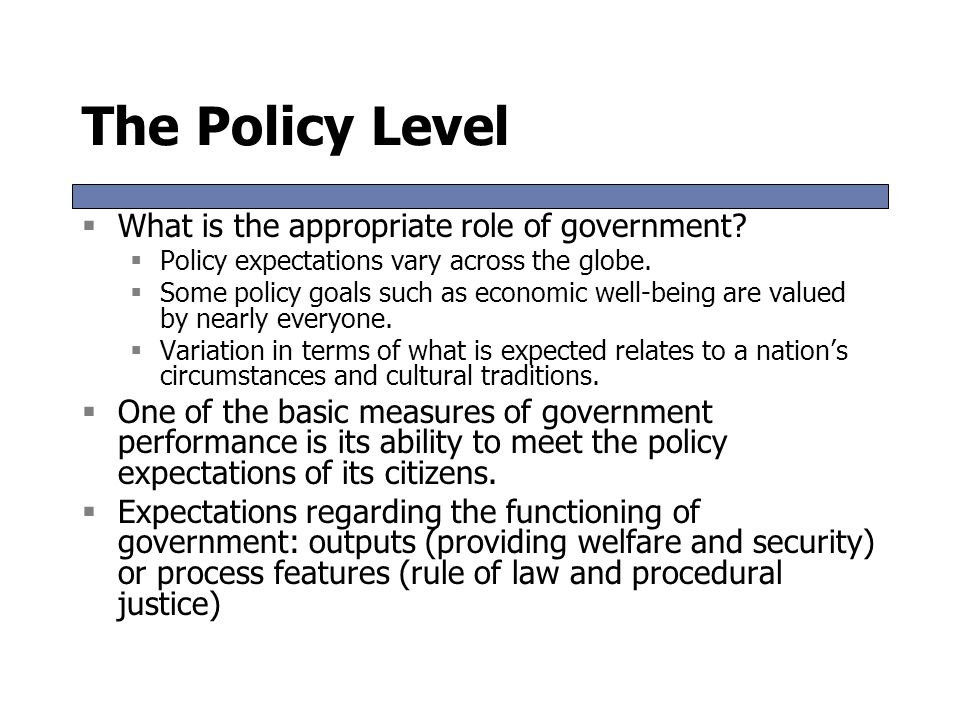 The Policy Level What is the appropriate role of government
