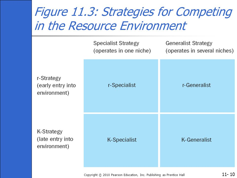 Figure 11.3: Strategies for Competing in the Resource Environment