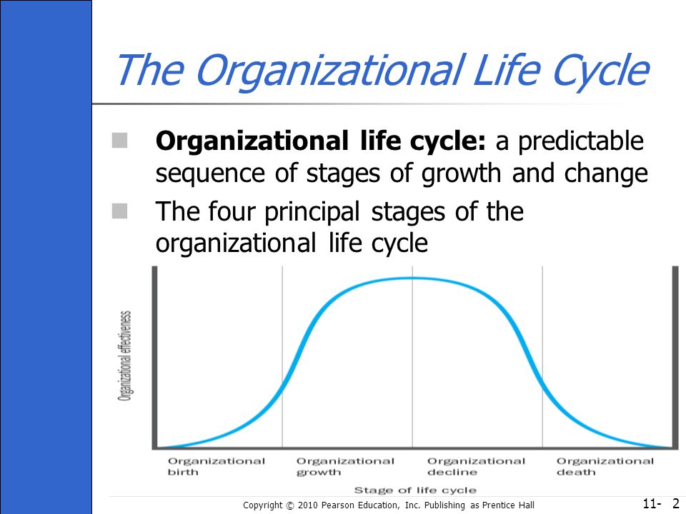 The Organizational Life Cycle