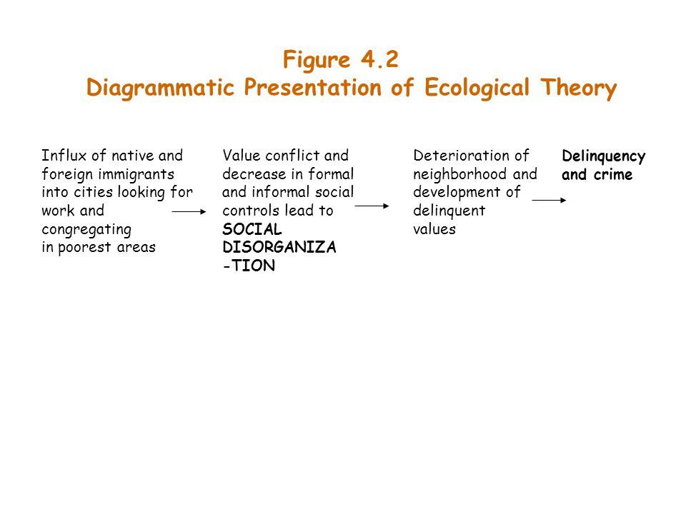Diagrammatic Presentation of Ecological Theory