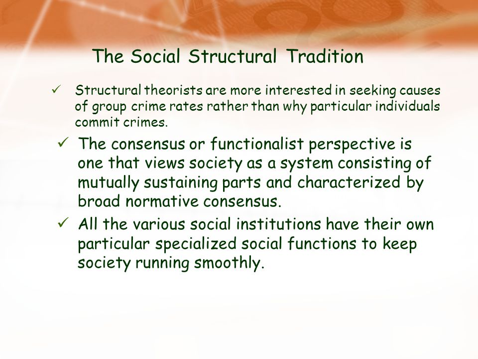 The Social Structural Tradition