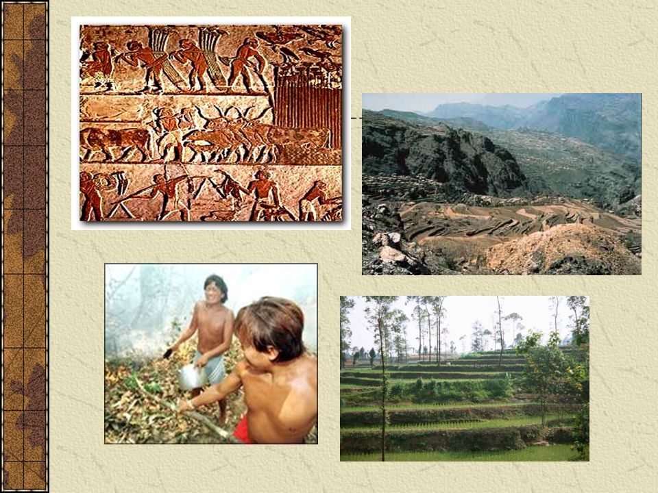 Clockwise: Ancient Egypt, Yemen terraced lands, Chinese terracing, Yanamami in Brazil