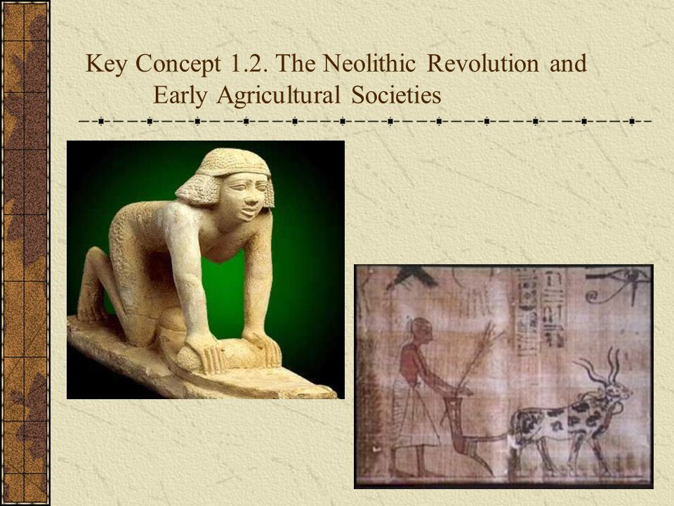 Key Concept 1.2. The Neolithic Revolution and Early Agricultural Societies