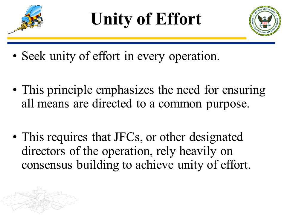 Unity of Effort Seek unity of effort in every operation.