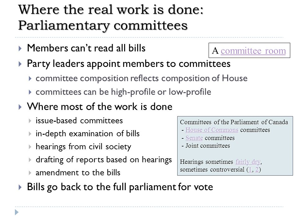 Where the real work is done: Parliamentary committees