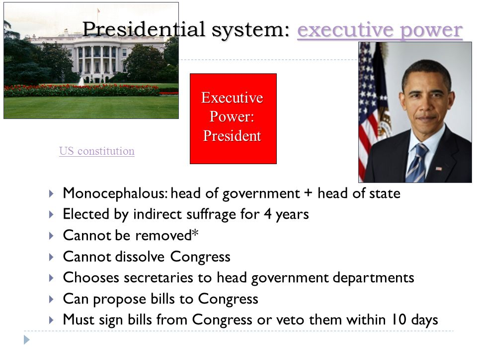 Presidential system: executive power