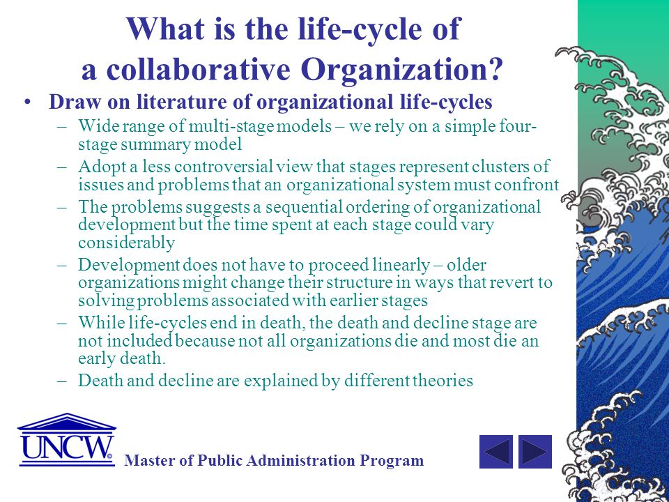 What is the life-cycle of a collaborative Organization