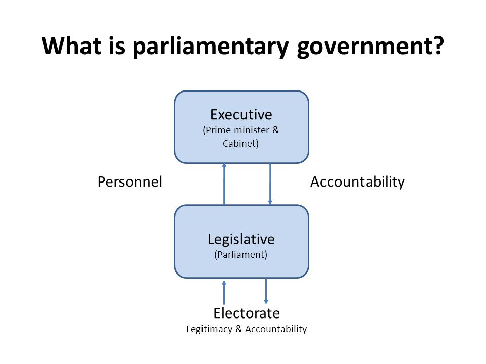 What is parliamentary government
