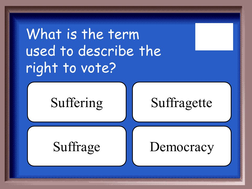 What is the term used to describe the right to vote