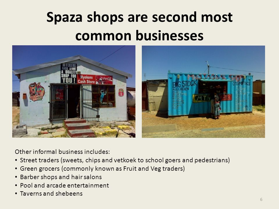 Spaza shops are second most common businesses