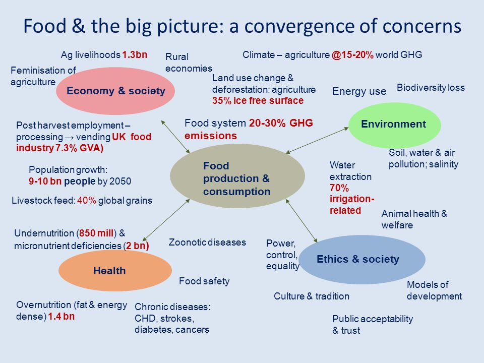 Food & the big picture: a convergence of concerns