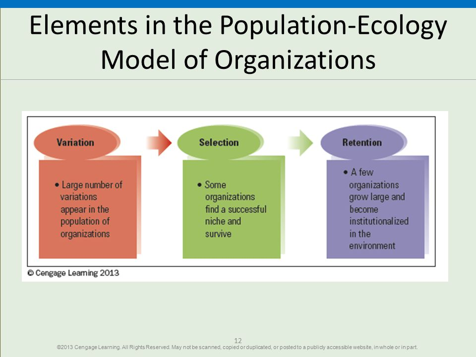 Elements in the Population-Ecology Model of Organizations