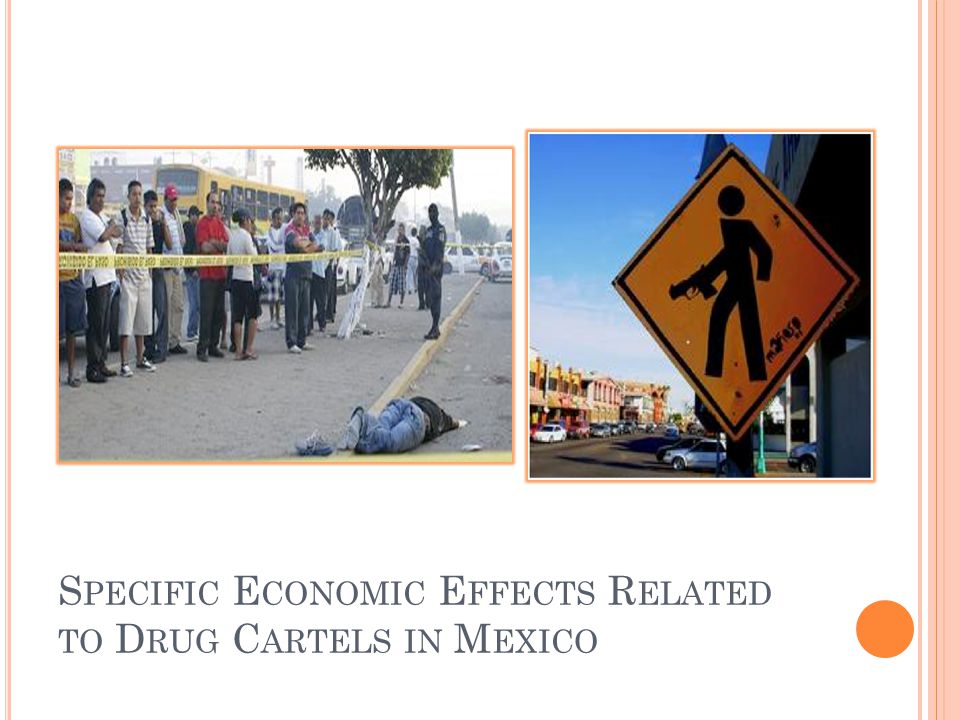 Specific Economic Effects Related to Drug Cartels in Mexico